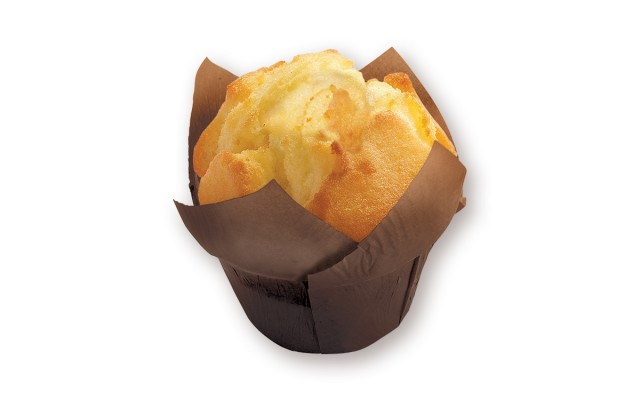 MUFFIN GROOT 100GR 18ST DAUPHINE (2007616)